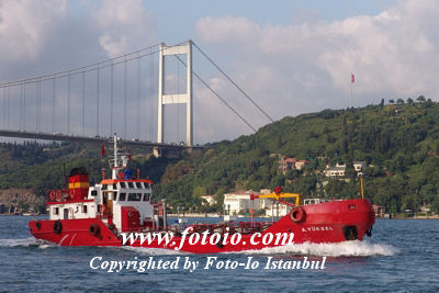 A.Yuksel_0705.JPG (image is larger than the thumbnail limit. Cropped.)